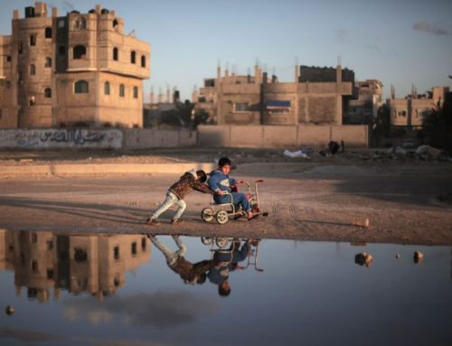 Green Hopes Gaza: storie di speranza dalla Striscia di Gaza